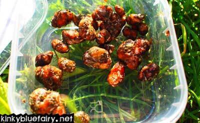 amsterdam truffles