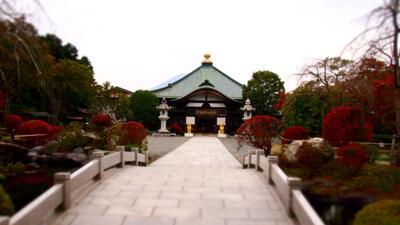 b-japan-hakone_7