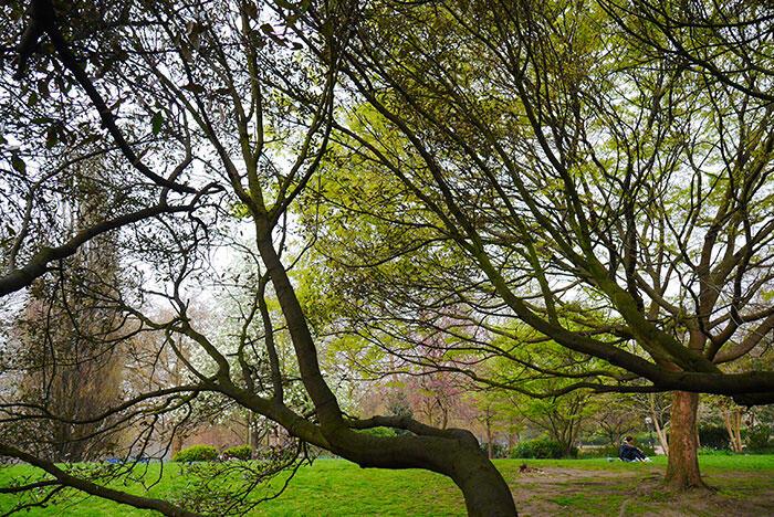 aa-london-yishyene-13-hyde-park