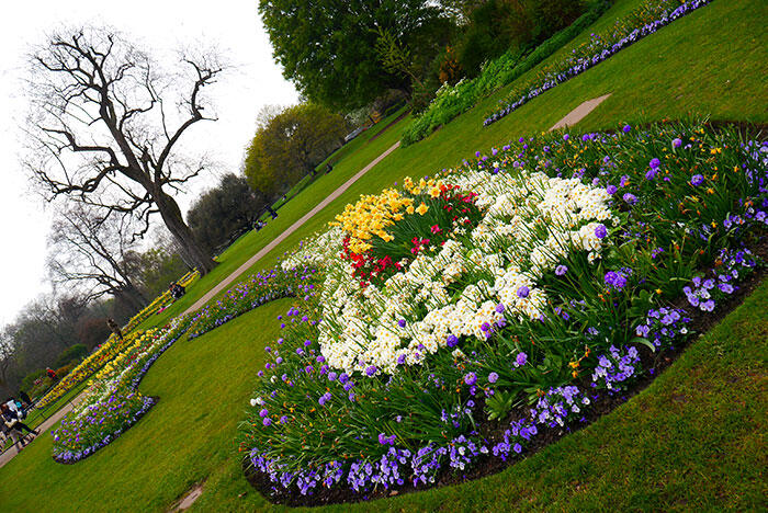 aa-london-yishyene-8-hyde-park