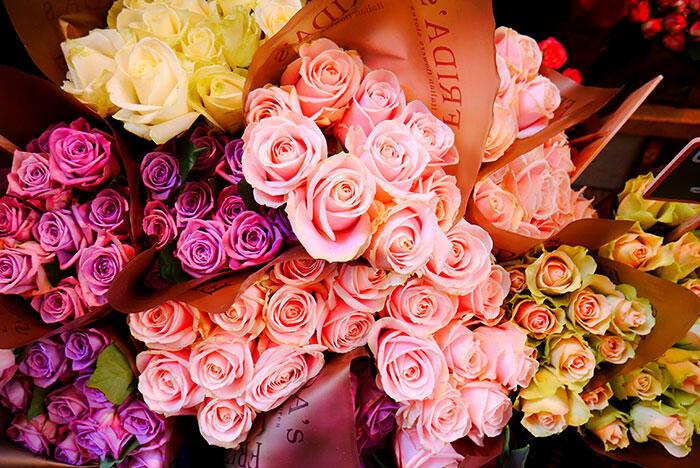 bologna-italy-40-flowers