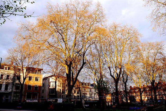 d-london-n-islingtong-1