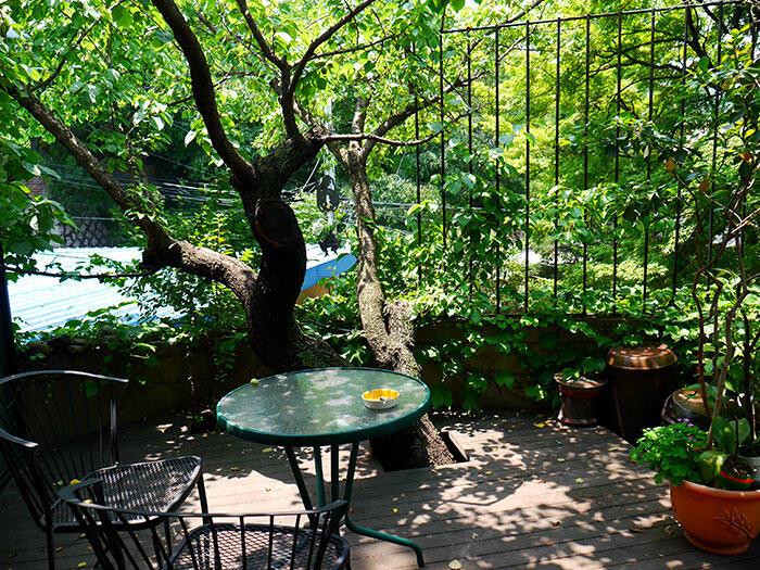airbnb-seoul-jongno-11-house-rooftop-garden