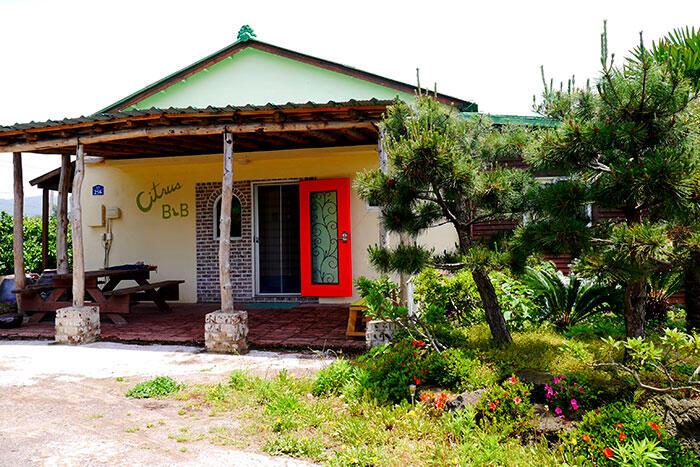 jeju-citrus-b&b-airbnb-4