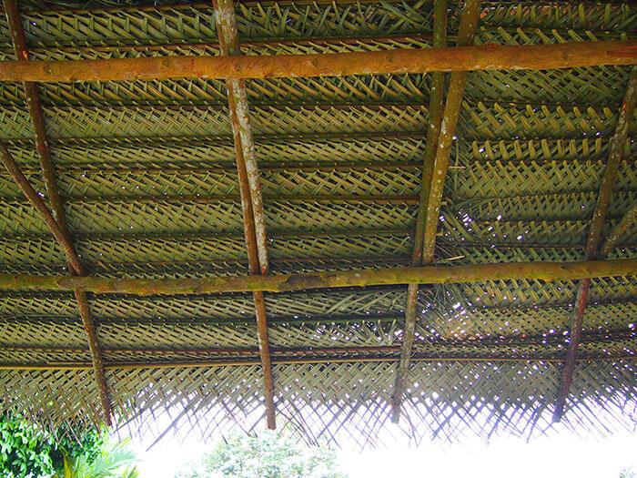 Awanmulan-Durian-Runtuh-12