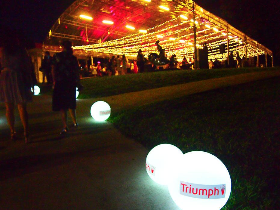 Kinkybluefairy-Triumph20yearsofmaximizermagic-06
