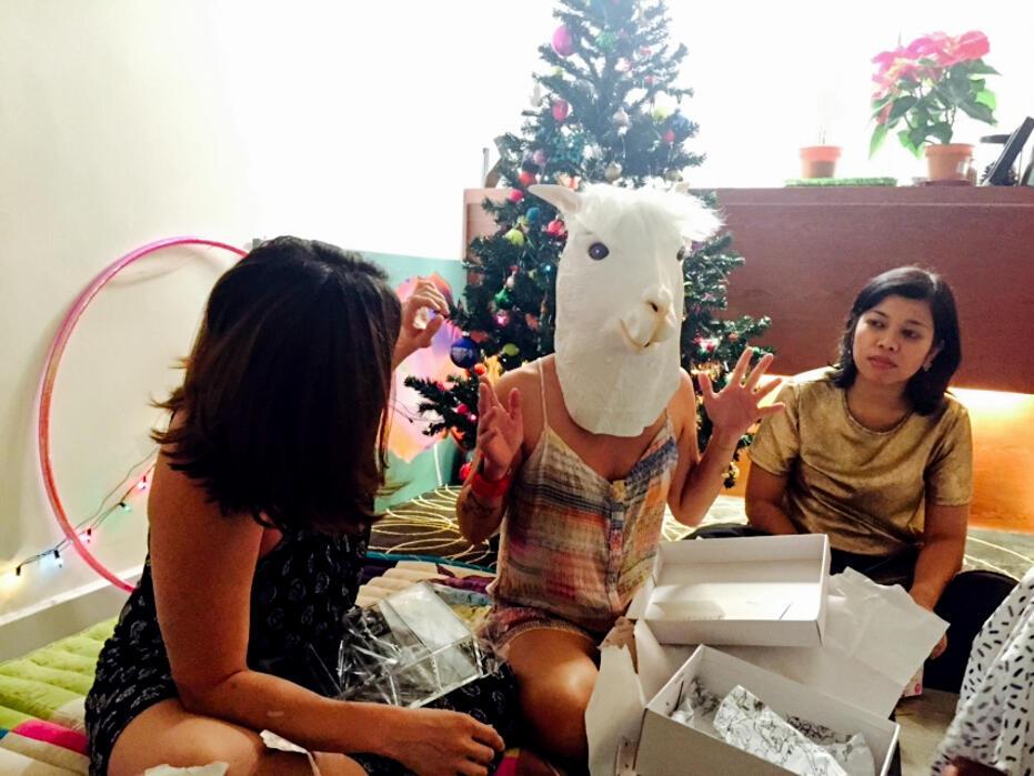 Christmas 2015-39