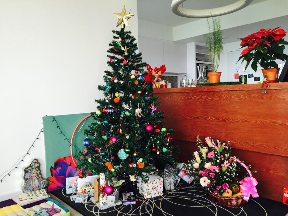 Christmas 2015-55
