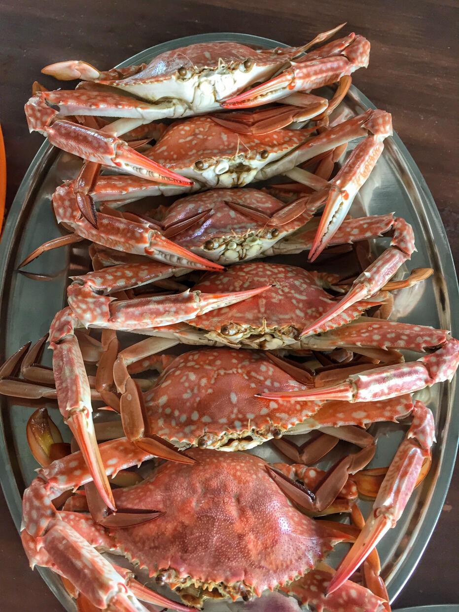Penang June 2016- food and wedding-12 ketam crab