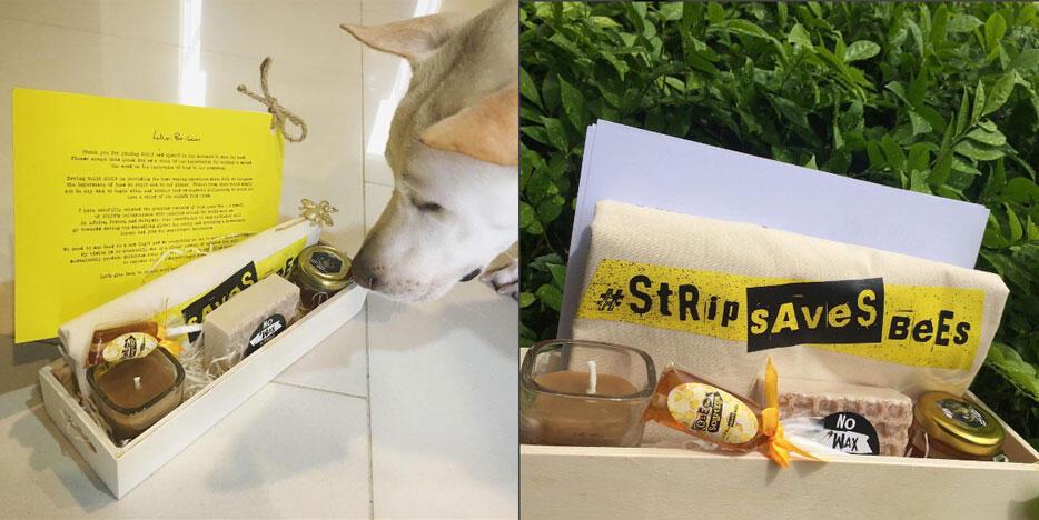 Strip-Saves-Bees-6