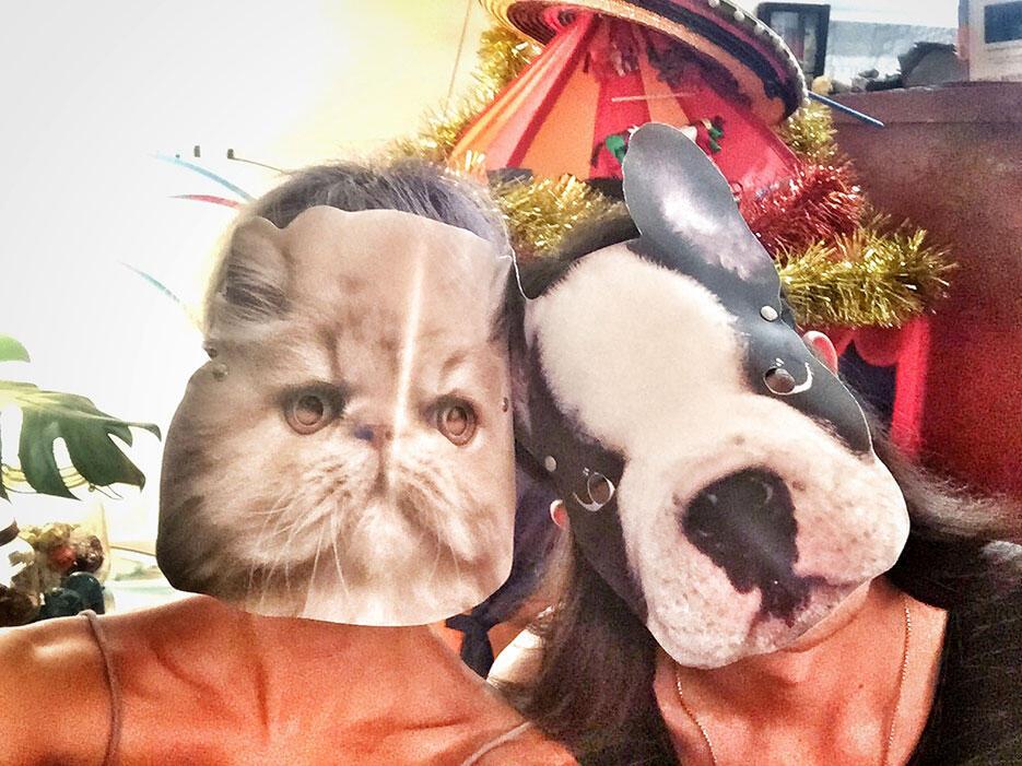 e-casa-fairy-cat-and-dog-joyce-and-jun