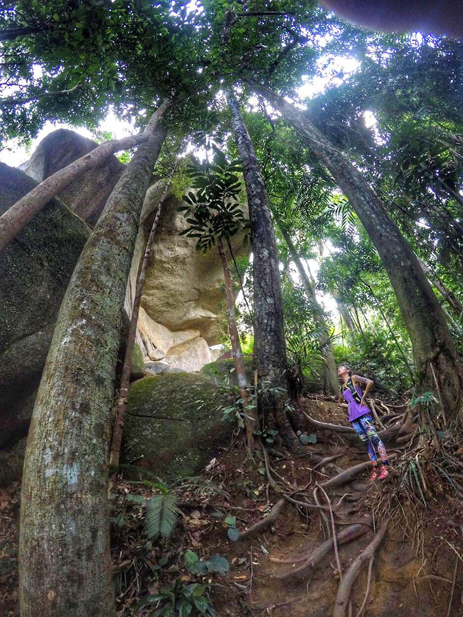bukit-kutu-kuala-kubu-bharu-hiking-malaysia-14-joyce-wong
