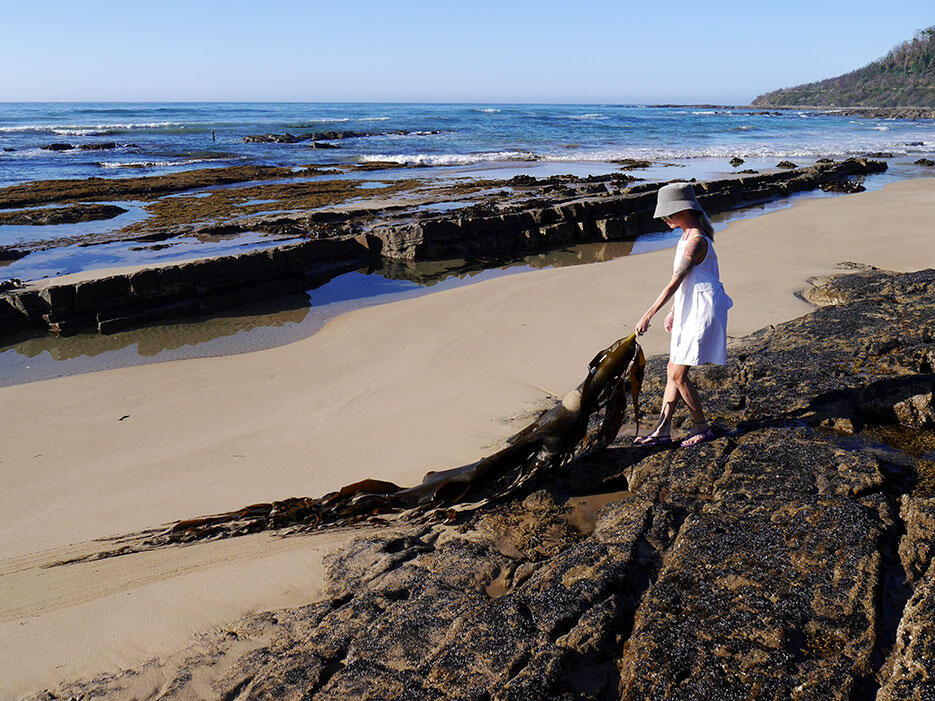 great-ocean-road-26-victoria-australia-rock-beach-kelp-giant-seaweed
