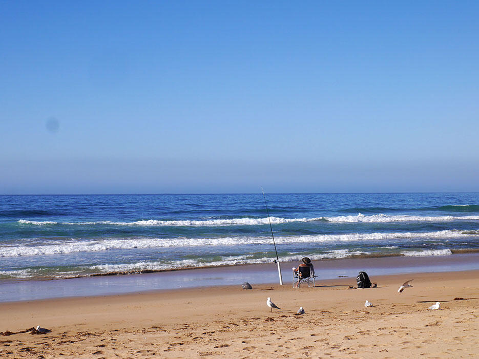 great-ocean-road-29-victoria-australia-sea-ocean-fisherman-seagulls