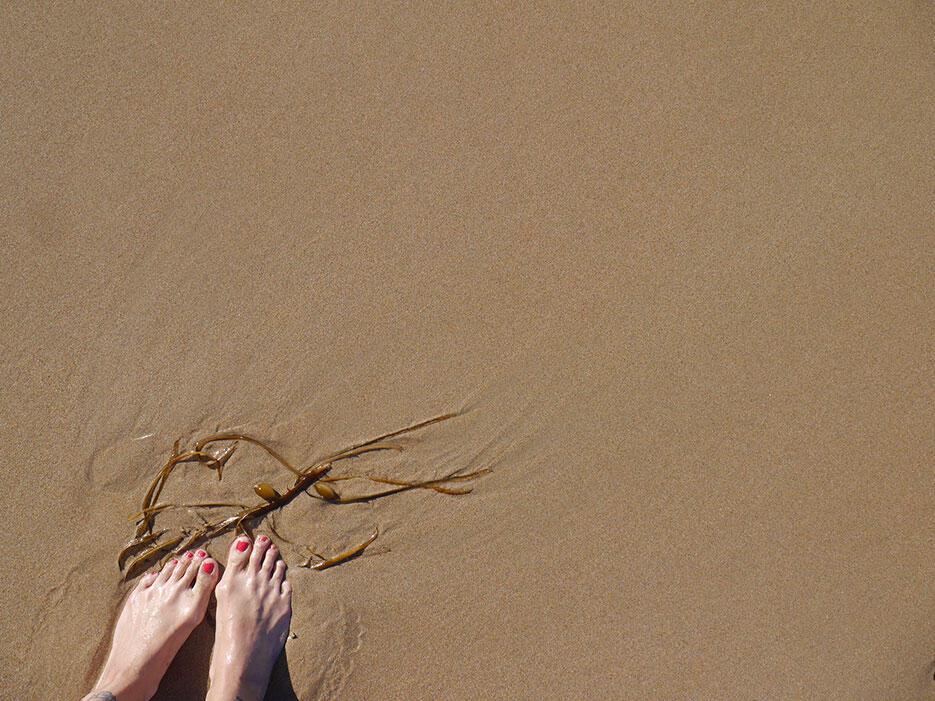 great-ocean-road-32-victoria-australia-seaweed-beach