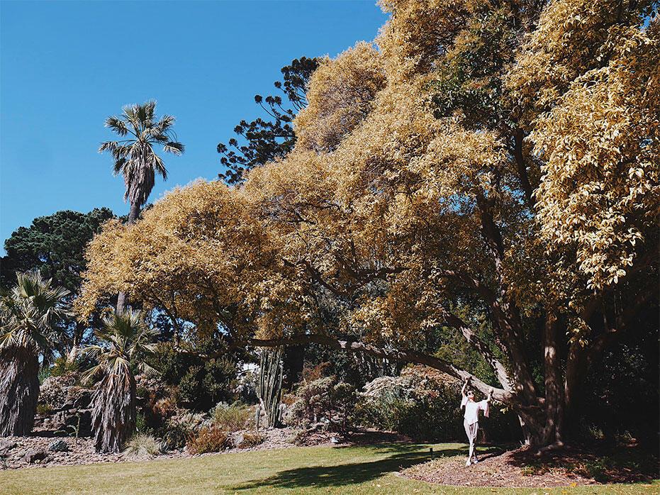 Melbourne-Australia-1-Queen-Victoria-Gardens